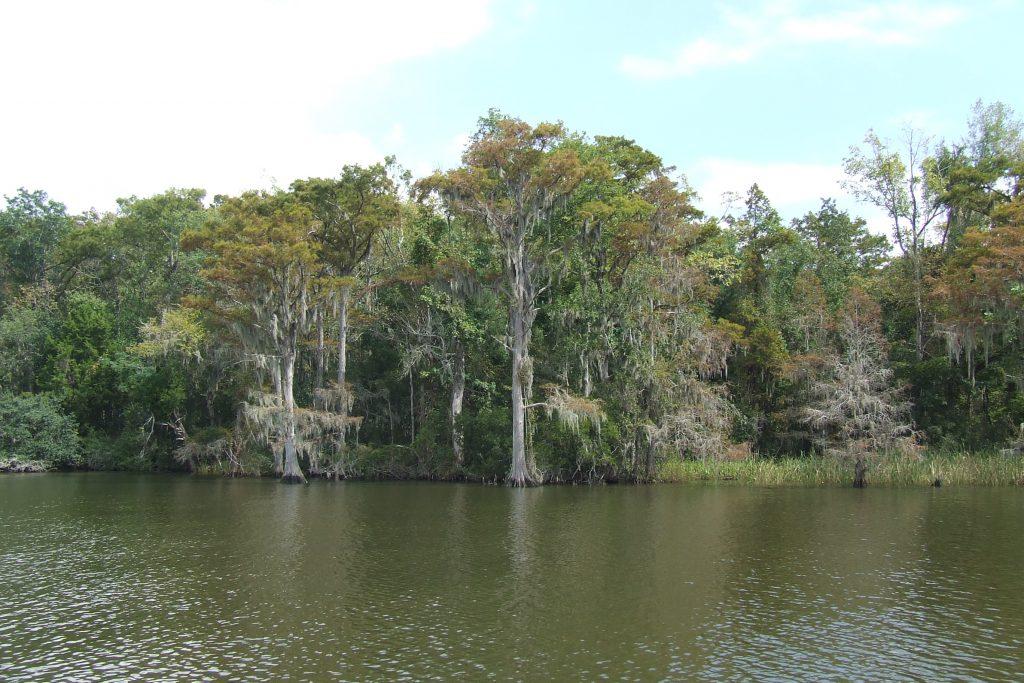 Дельта реки Алабама, штат Алабама США