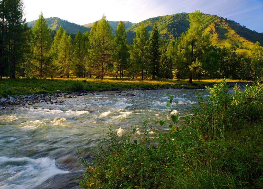 Горная речка на Алтае в Сибири