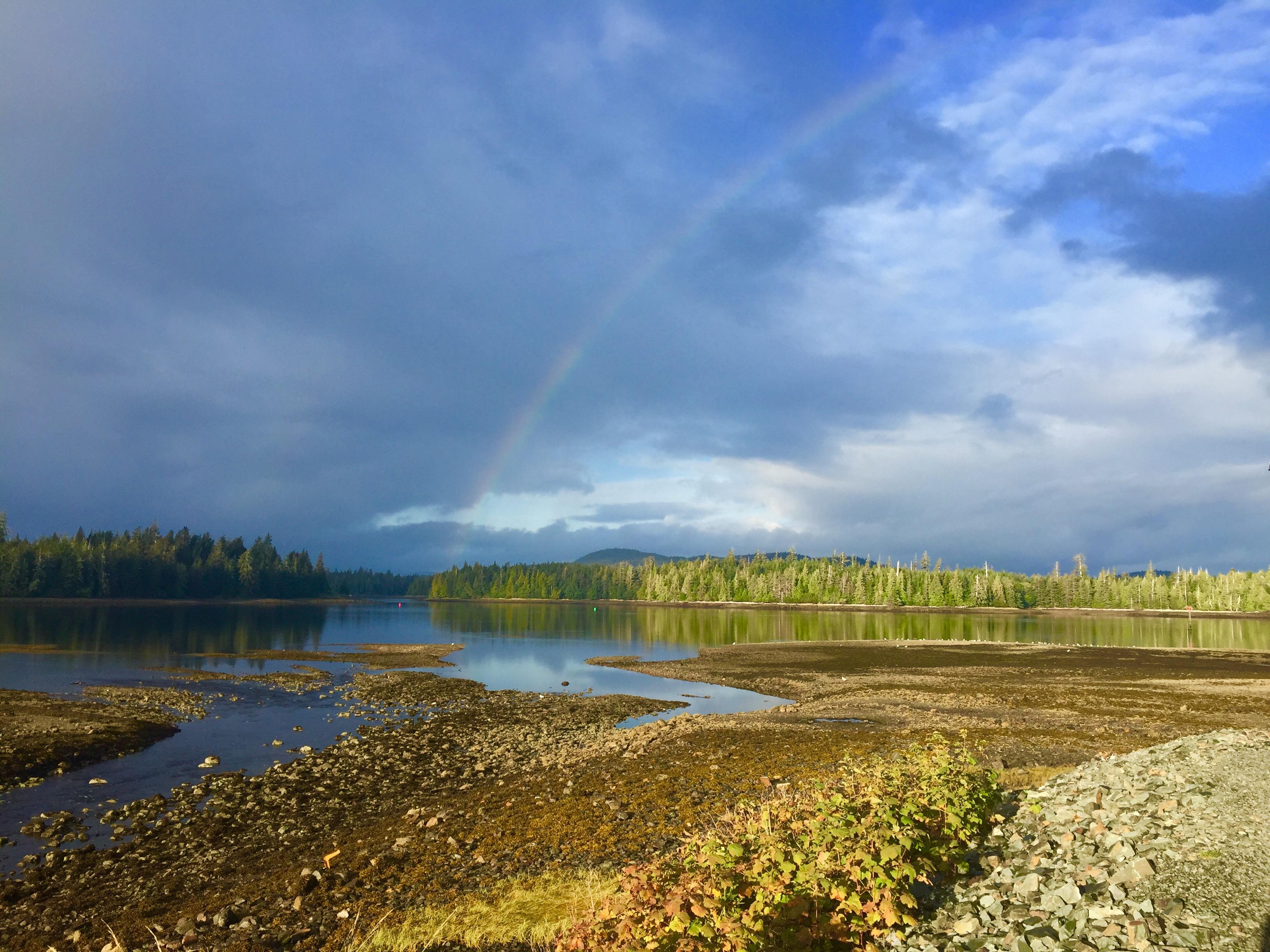 Фото радуги в небе над лесом, Аляска