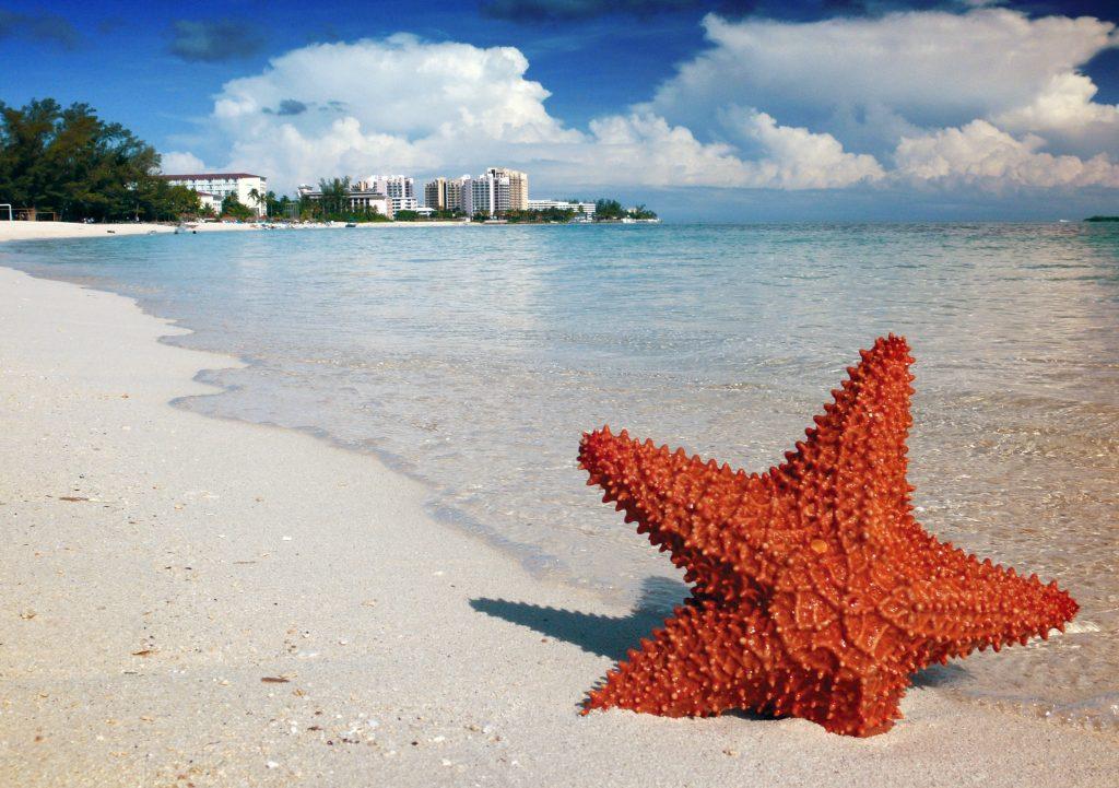 Багамы, Багамские острова - пляж в Нассау