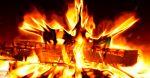 Горящий костер, огонь, пламя, головешка в огне