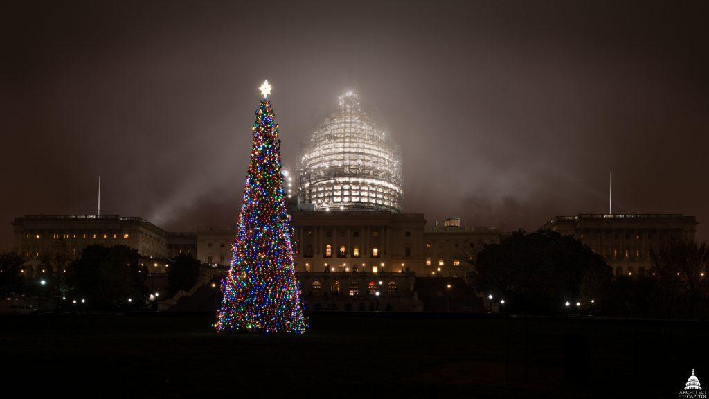 Рождественская елка Капитолия, США