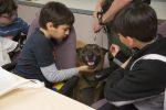 Дети гладят полицейскую собаку