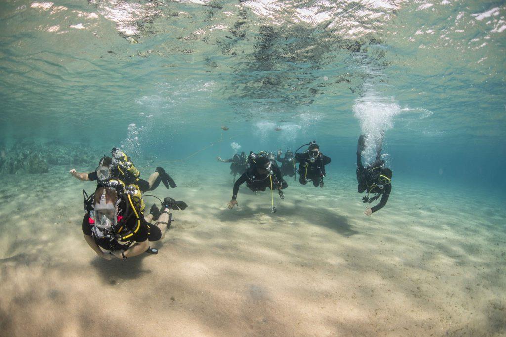 Группа аквалангистов дайверов плывет под водой
