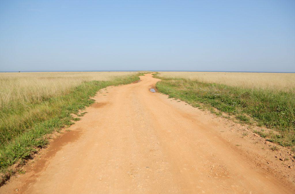 Пустынная грунтовая дорога в степи или пустыне