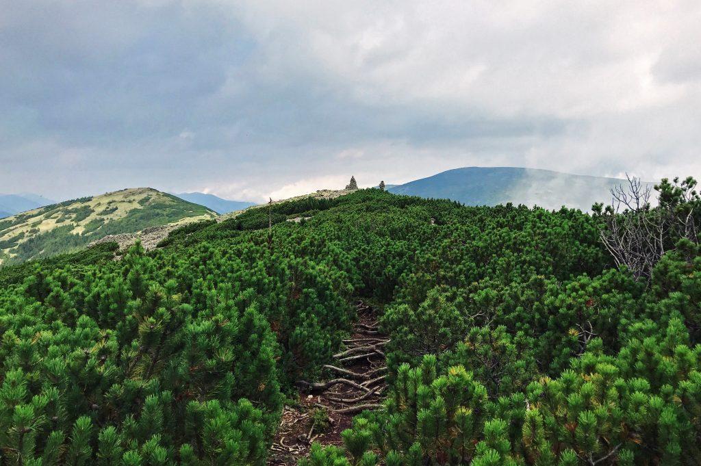 Горная вершина в Карпатах в Ивано-Франковской области