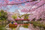 Замок Химедзи и японский сад Кокоен