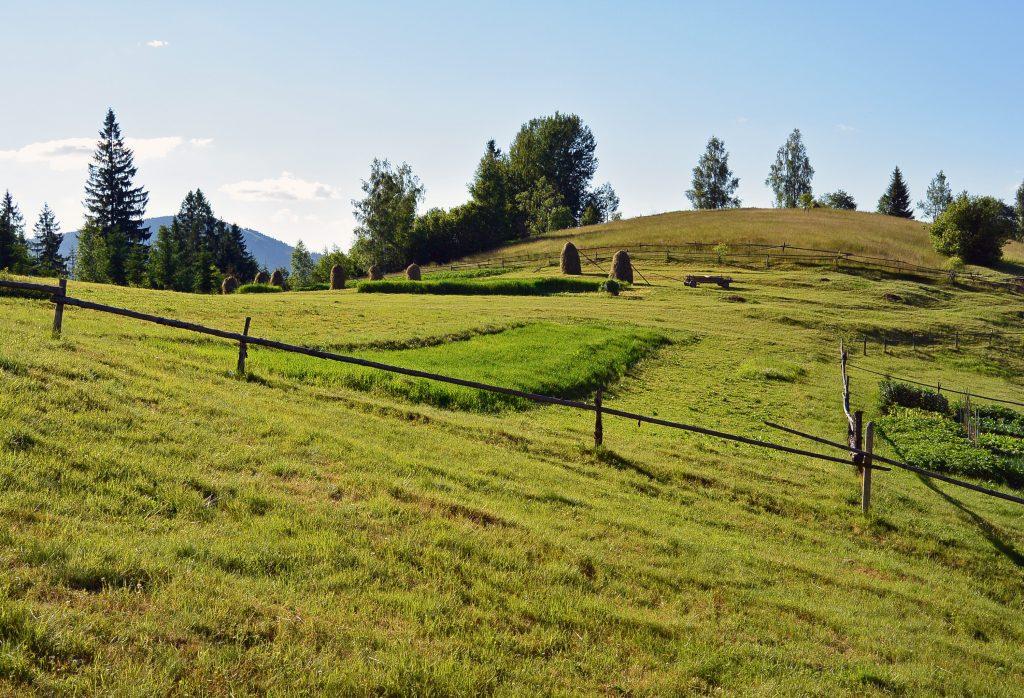 Пастбища сенокос полонина в Карпатах