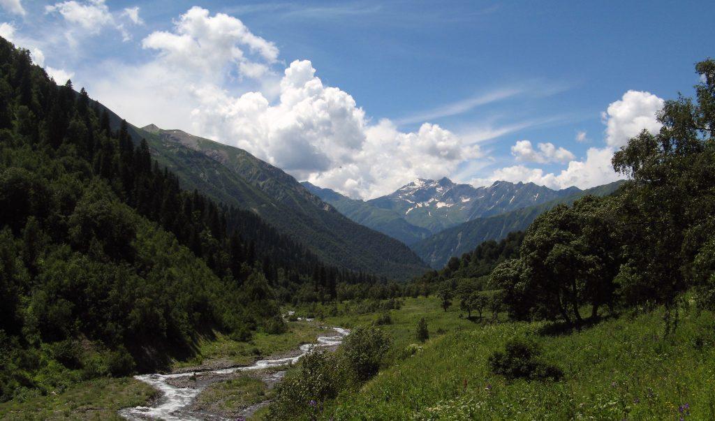 Горный ручей река в Кавказских горах, Кавказ, Грузия