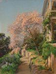 Иосиф Крачковский - картина Цветущее дерево в Крыму