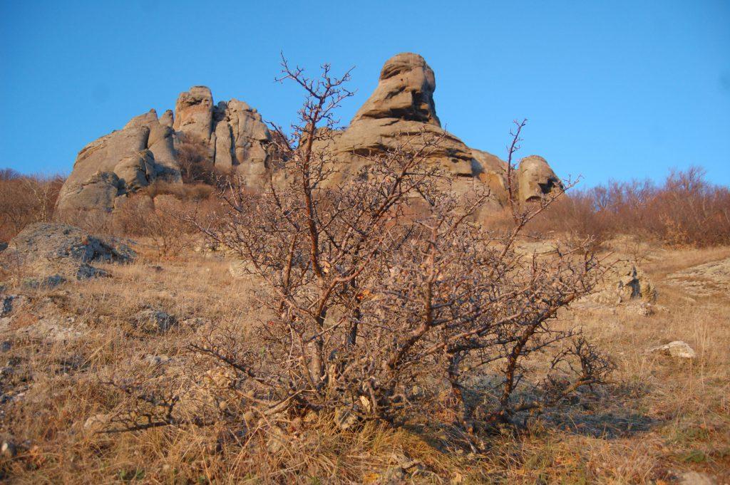 Фото горы Демерджи