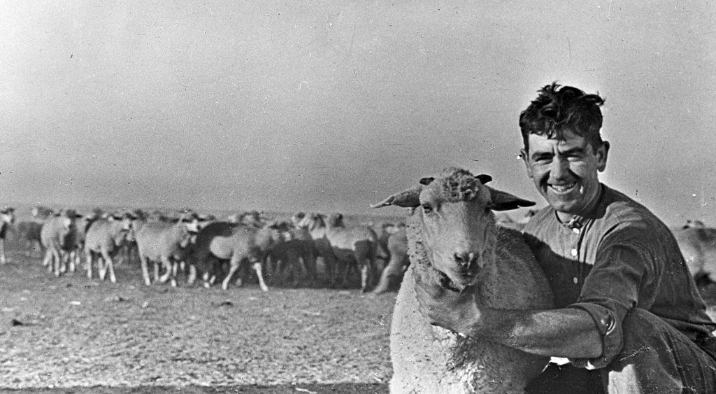 Пастух и овцы в Крыму - ретро фото Советского Союза