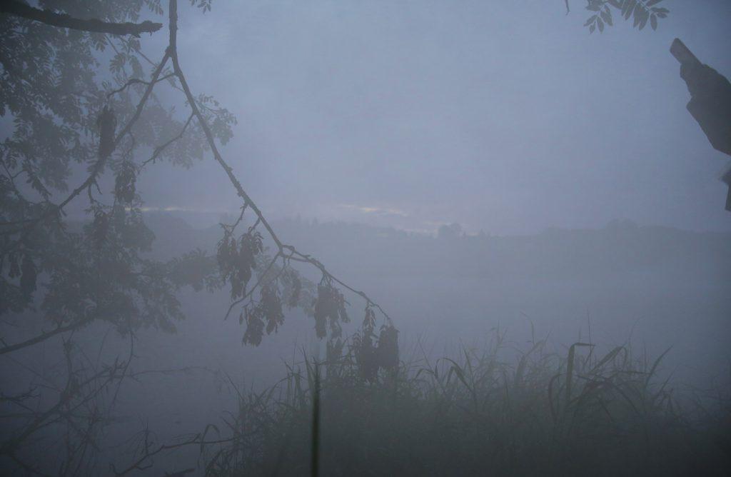 Сильный туман, лес в тумане на закате