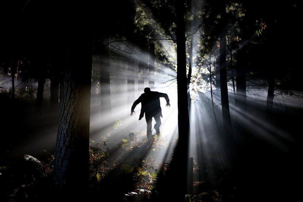 Страшный человек зомби Франкенштейн в лесу