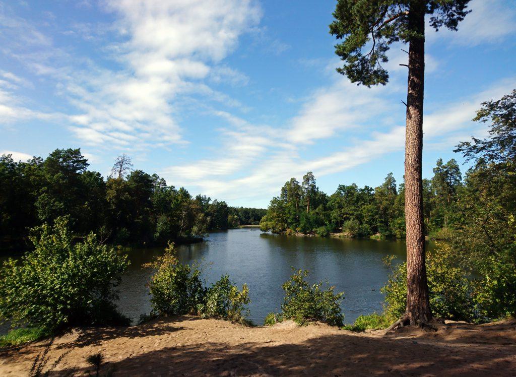 Фото озера в Пуща-Водице