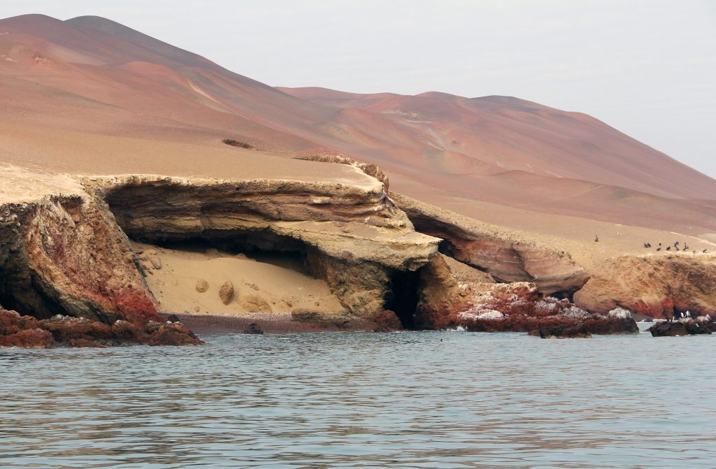 Острова Баестас, заповедник Паракас, Перу
