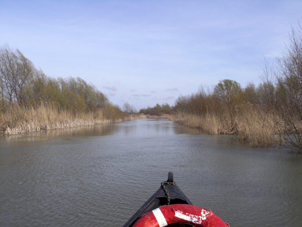 Дунайские плавни, рыбацкая лодка плывет по каналу Дуная