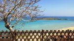 фото пляжа Протараса Фиговый залив