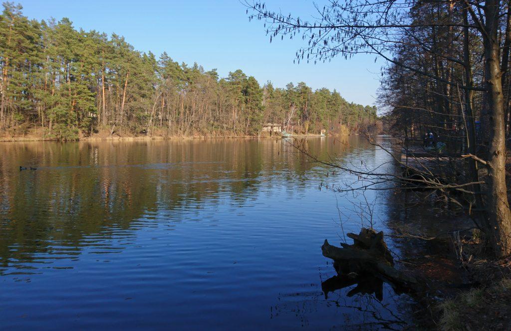 Лесное озеро в Киеве, район Пуща-Водица