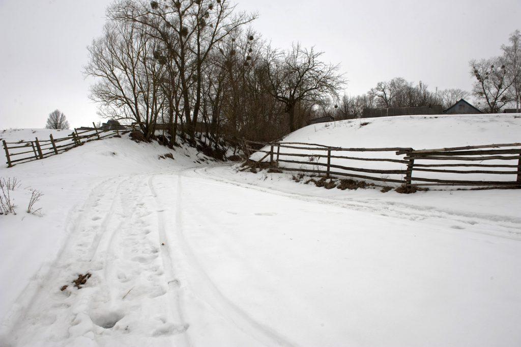 Сельская дорога зимой в селе, Радомышль, Украина