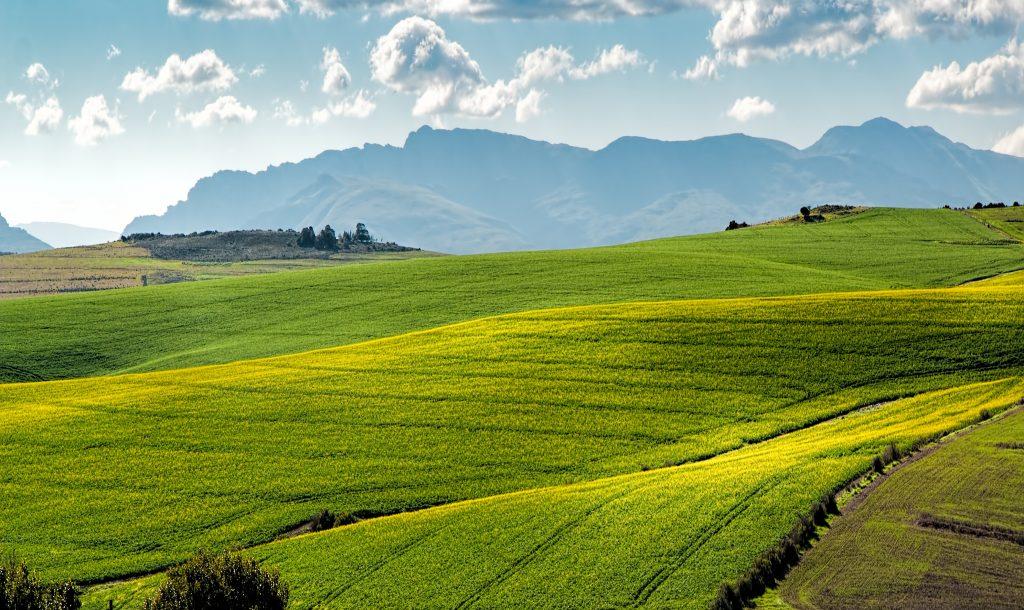 Свеллендам - Западная Капская провинция ЮАР