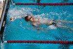 Пловец плывет в бассейне