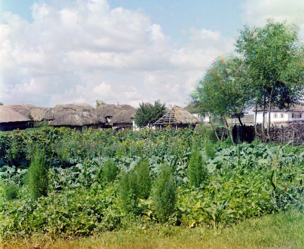 Украинское село начала 20 века, Малороссия ретро фото