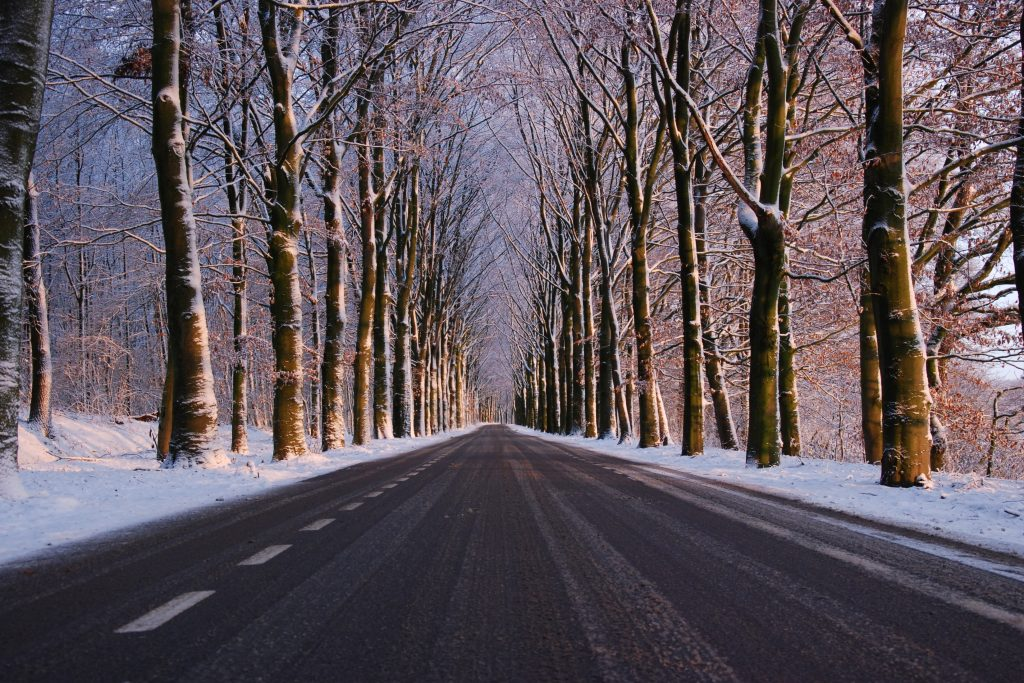 Зимняя дорога в лесу стоковое фото
