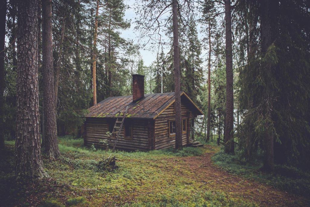 Деревянный домик избушка в лесу