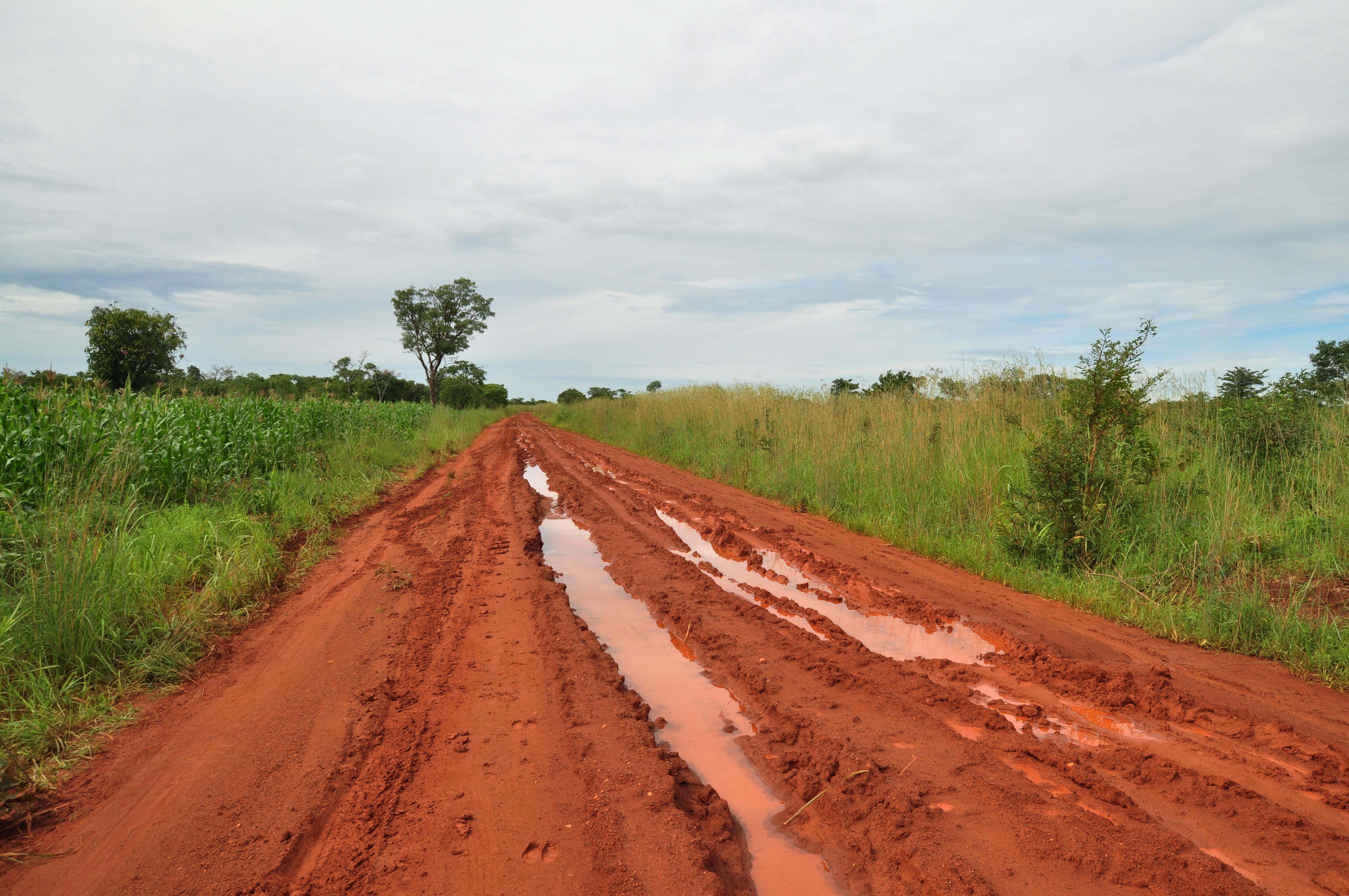 Дорога в Замбии фото